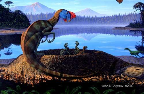 File:Oviraptor-John-Agnew.jpg