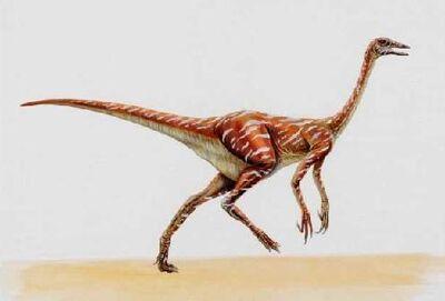Ornithomimus-dinosaurjungle
