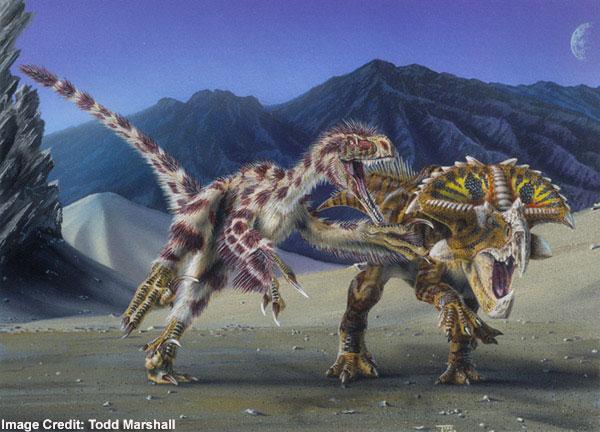 File:Velociraptor-Todd-Marshall.jpg
