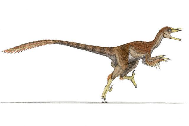 File:Velociraptor-Ahrkeath.jpg