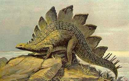 File:Stegosaurus-copyrightexpired.jpg
