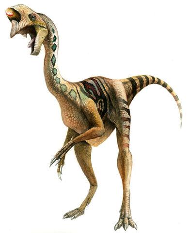 File:Oviraptor-Julius-T -Csotonyi.jpg