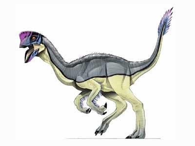 File:Oviraptor-1.jpg