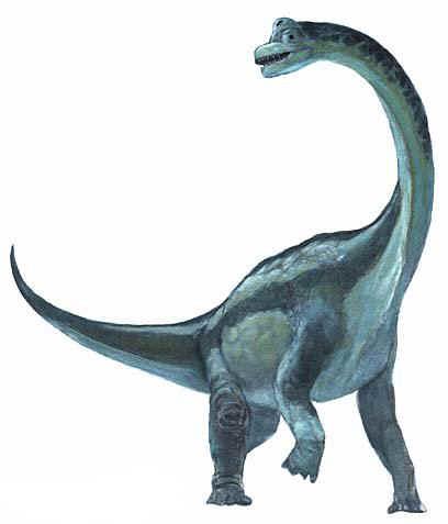 File:Brachiosaurus blue.jpg