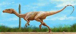 Guaibasaurus-4 bp blogspot