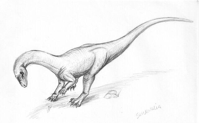 File:Saturnaliamaniraptora.jpg