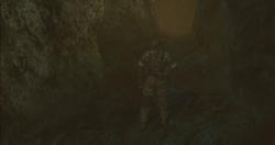 OSE082 - Snake sale cueva