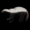 Badger 387c56e032d0a.png