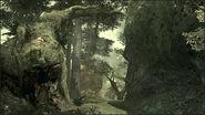 ForestFirefight
