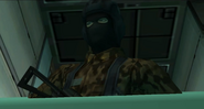 Raiden in disguise