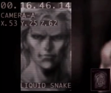 Liquid Snake profile