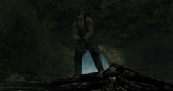 OSE337 - Snake detrás de la cascada