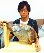 Kojima meat