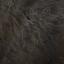 Ddog hair3