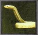Schlange k solidussnake