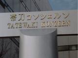 Tatewaki Konzern