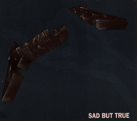File:Sad But True (single).jpg
