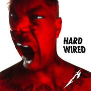 Hardwired (single)