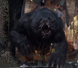 Exodus - niedźwiedź