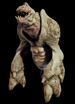 MLLDEVNosalisRhino