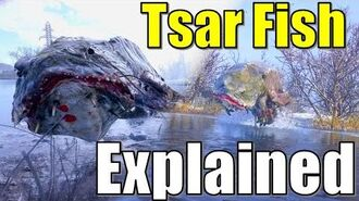 The Tsar Fish Origins in Metro Exodus - Morphology, Lore, Room, Key, Origins and Biology Explained
