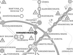 Sukarevskya