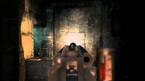 Metro 2033 (Helsing pneumo rifle)