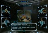 Escaneando un Escarabajo beta