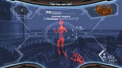 X-Ray Gandrayda