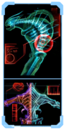 Pirate injuries scanpic