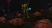 Samus Standing in Kihunter's Nest MOM
