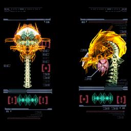 AU scan images