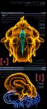 Escáner Unidad Aurora 217 izquierda MP3