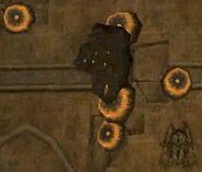 Nido de Avispas Guerreras destruido
