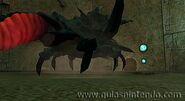 Escarabajo metalizado en las ruinas chozo1