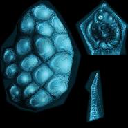 Phaaze embryo texture