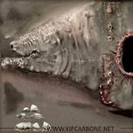 Scarp texture Kip Carbone