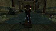 Deep Chozo Ruins Screenshot (58)