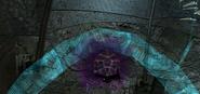 Dark beam3
