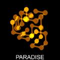 1.1.3 Paradise.png