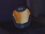 Adam's helmet