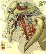 Flagra side head