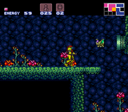 Geega en Super Metroid