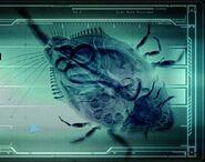 Cría de Leviatán menú de inicio MP3