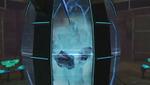 Phazon Elite stasis