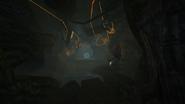 Túnel en las Raíces