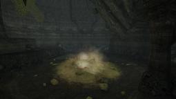 Cueva de las Raíces