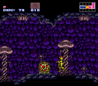 Kago en Super Metroid