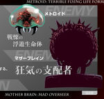 Mzm metroid mother