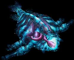 Leviathan Infant CMDL
